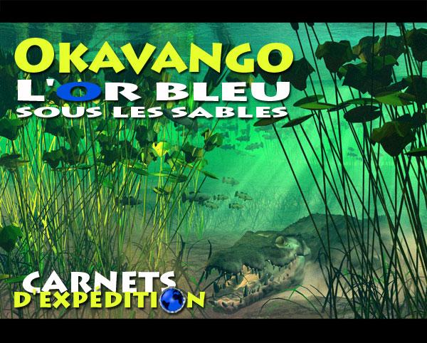 Delta de l(Okavango
