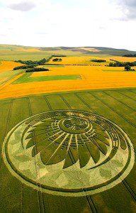 crop circle anglais