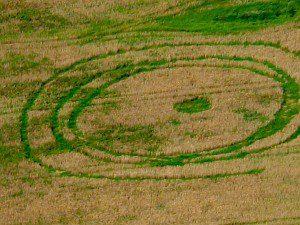 crop circle France