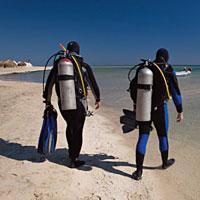 Plongeurs International : Mer Rouge Marsa Shagra
