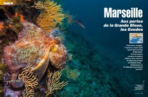 Plongeurs International - Les Goudes