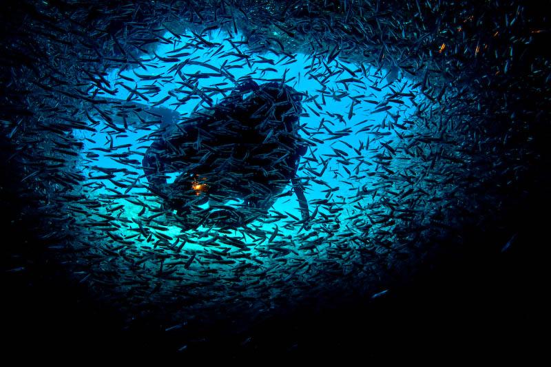 La grotte aux poissons de verre