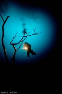 L'entrée du cenote Angelita