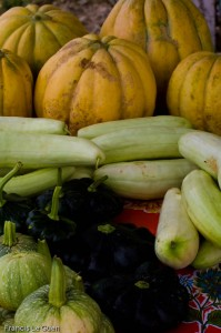 Potimarons et melons
