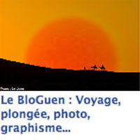 BloGuen : Le widget !