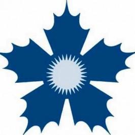 Le chardon bleu