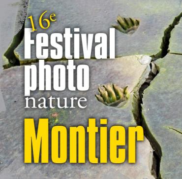 Le Festival Photo Nature à Montier en Der