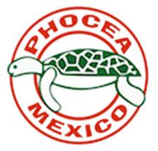 Mexique : stage photo VIP au Phocea Mexico avec Francis Le Guen