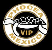 Mexique : le stage photo !