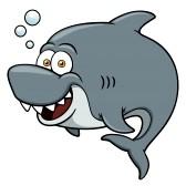 Les requins sont vraiment des cons !
