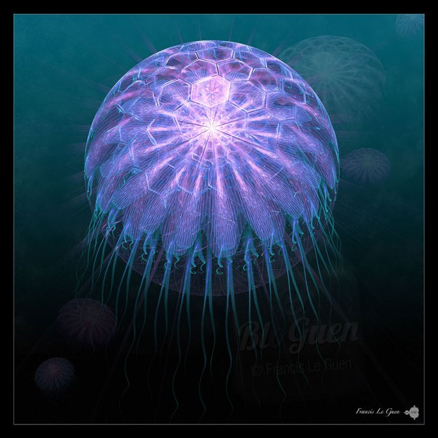 Collection Abysses - Medusa