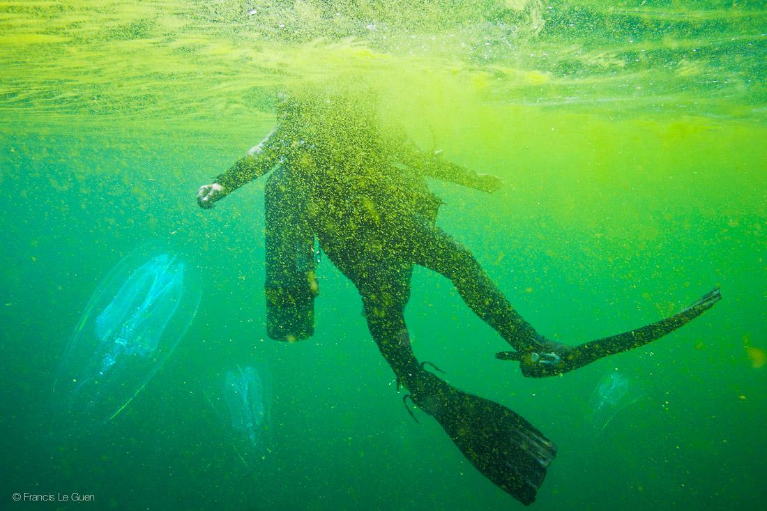 TripAdekua plongée Oman