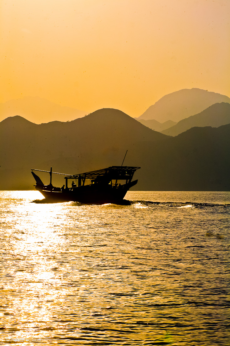 TripAdekua : Oman, ça vous nudibranche ?